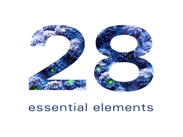 28 essential elements
