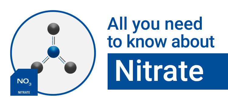 All You Need to Know About: Nitrate