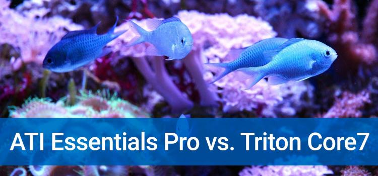 ATI Essentials Pro vs. Triton Core7: A Comparison of the 2 Dosing Products